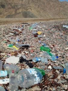 Plastic litter in Dahab